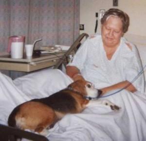 mascotaterapia